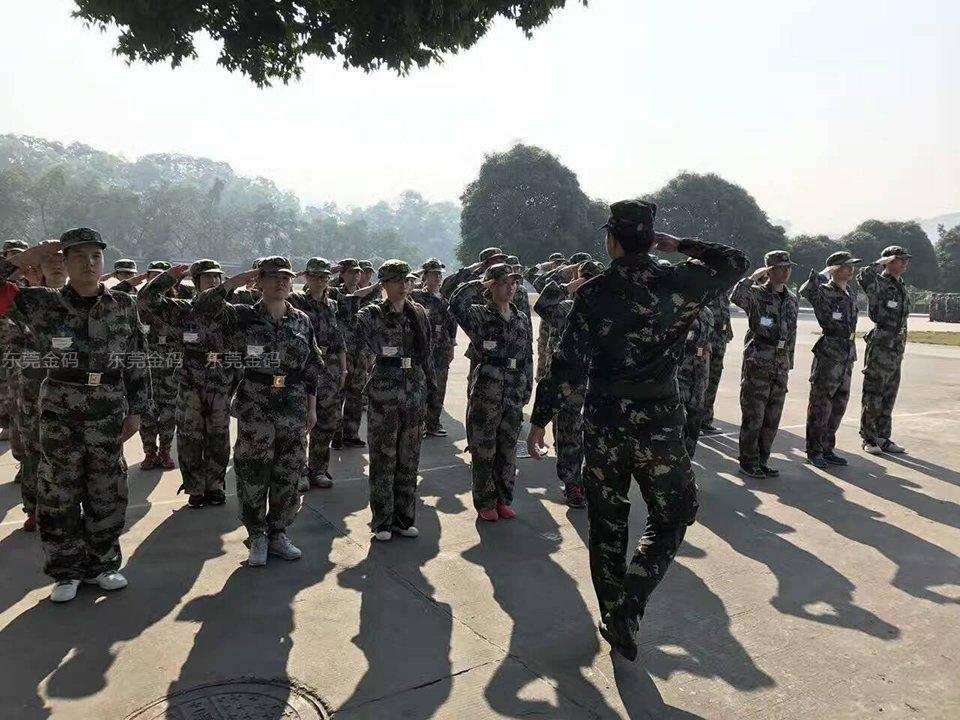 东莞北大青鸟教职团队开展军事拓展训练活动